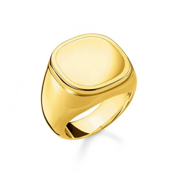 Thomas Sabo Ring Größe 48 TR2249-413-39-48